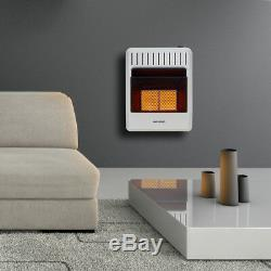 Avenger Dual Fuel Ventless Infrared Gas Heater With Base Feet, Vent Free 20K BTU