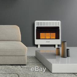 Avenger Recon Dual Fuel Ventless Infrared Gas Wall Heater, Vent Free 30,000 BTU