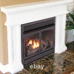 Bluegrass Living Vent-Free Dual Fuel Fireplace Insert 32K BTU Blk Remote Control