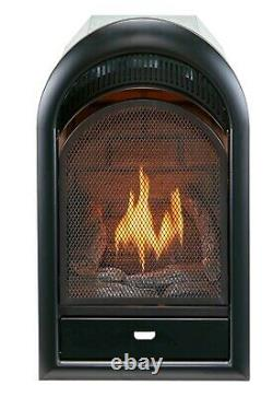 Bluegrass Living Vent Free Natural Gas Fireplace Insert, T-Stat Control, B100TN