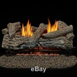 Bluegrass Living Vent Free Natural Gas Log Set-24 Inch, Remote B24NR-ES1