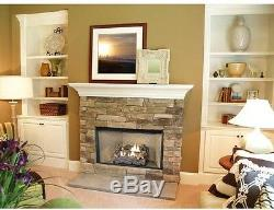 Dual Fuel Fireplace Logs 18 in. Natural Gas Liquid Propane Vent Free Insert Kit