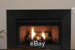 Empire Innsbrook Vent Free Gas Insert Natural Gas with Surround VFP-20IN-73L10N