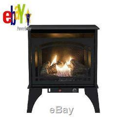Freestanding Dual Fuel Stove Heater 20000 Btu Vent Free Natural Gas LP Fireplace