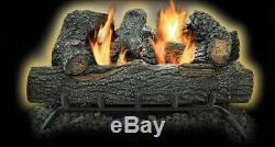 Kozy World GLD2455T Propane/ Natural Gas Thermostatic 24 Black Forest Log Set
