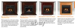 Monessen 24 Symphony Vent Free Gas Fireplace Traditional IPI Natural Gas