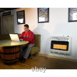 Mr. Heater Propane Heater 30,000 BTU Vent Free Radiant Natural Gas