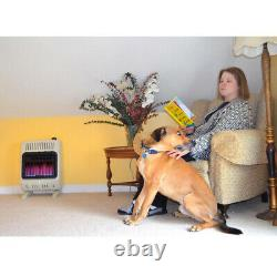 NATURAL GAS SPACE HEATER FIREPLACE 10,000 BTU Vent Free Blue Flame White