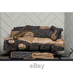 Natural Gas Fireplace Vent FREE Log Set Heat Dual Burner Dancing Flames 24