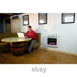 Natural Gas Heater Vent Free 20,000 BTU Blue Flame Propane Thermostat Control