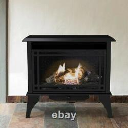 Pleasant Hearth 30000 btu 1000-sq ft Dual-Burner Vent-Free Natural Gas/Propane
