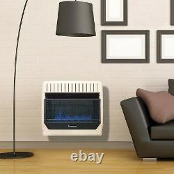 ProCom Propane Gas Vent Free Blue Flame Space Heater 30K BTU, ML300TBG