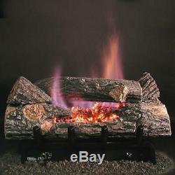 Rasmussen 24 Bark See-Thru Vent Free Natural Gas Evening Embers DF